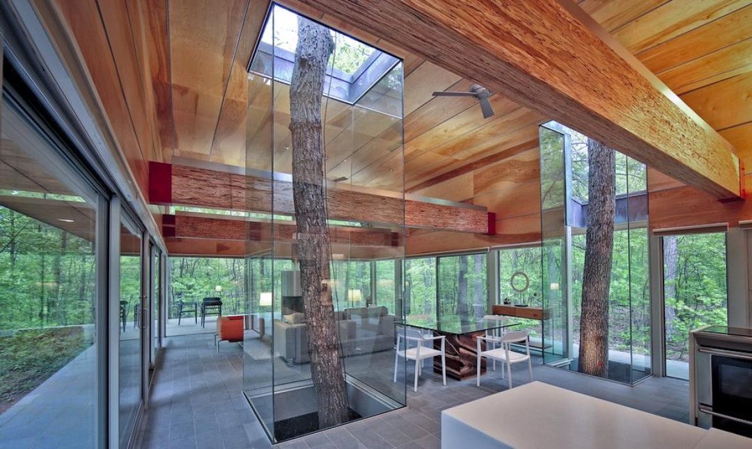 Топ-11 домов с деревьями внутри новости ассбуд - строительны.